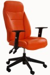 """Scaun ergonomic pentru birou"""